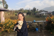 <h5>Pothana, Pokhara</h5><p>The puppy name is Jimmy</p>
