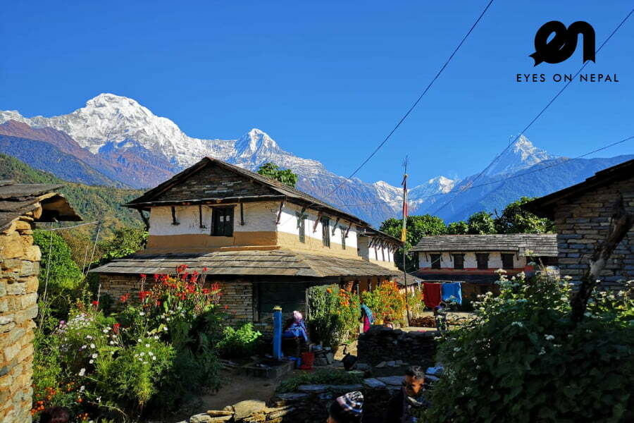 Ghorepani Poon Hill Trek 4 days 3 nights | Poon Hill trek from Pokhara