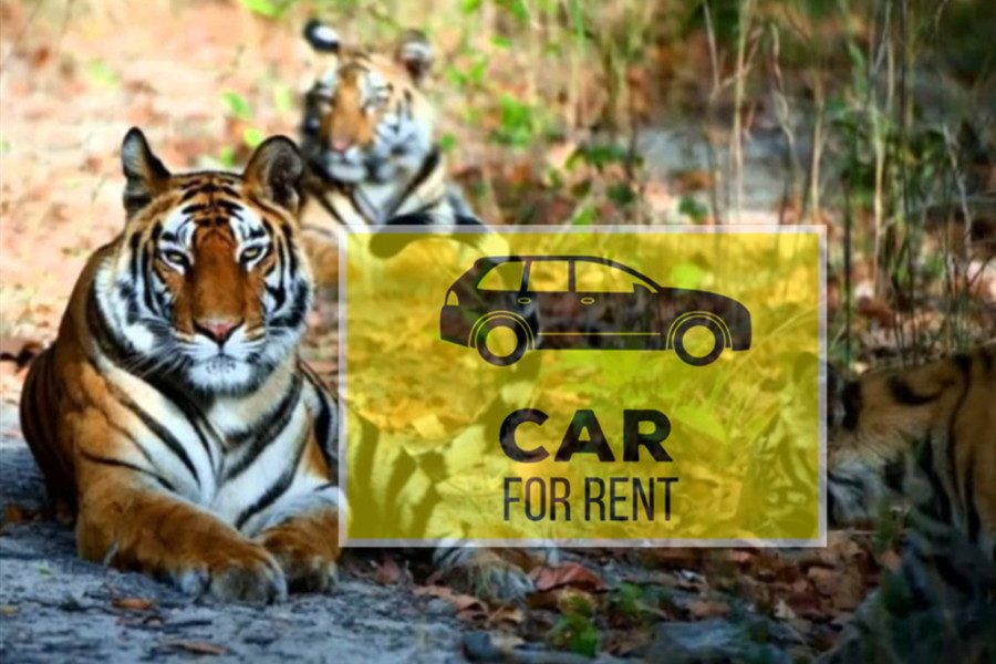 Private Car Rental Chitwan to Kathmandu [One Way Transfer]