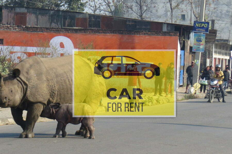 Private Car Rental Kathmandu to Chitwan [One Way Transfer]